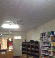 Carrieton Store Roof